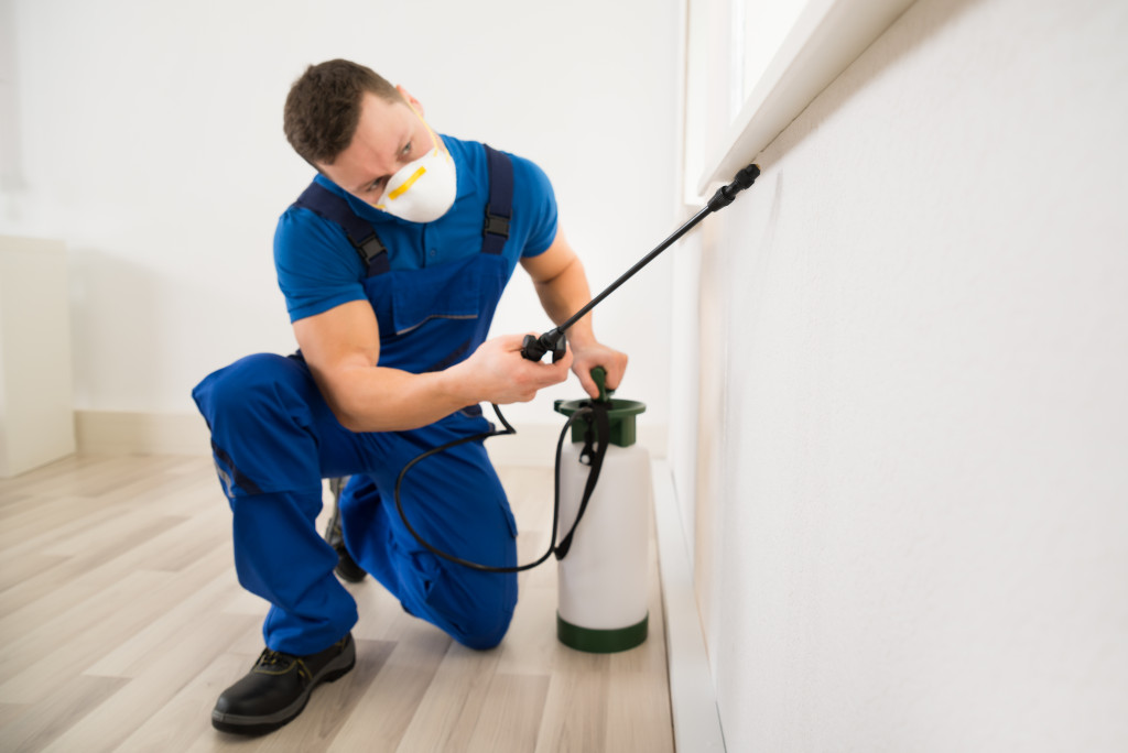 pest proofing